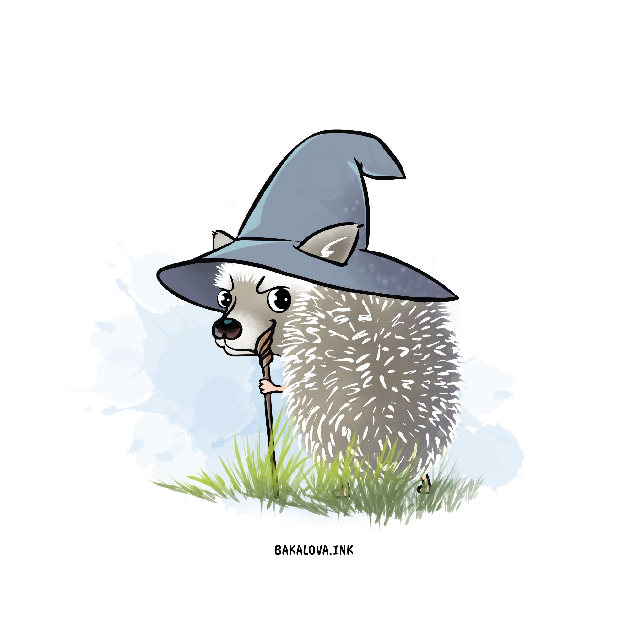 Hoary Hedgehog