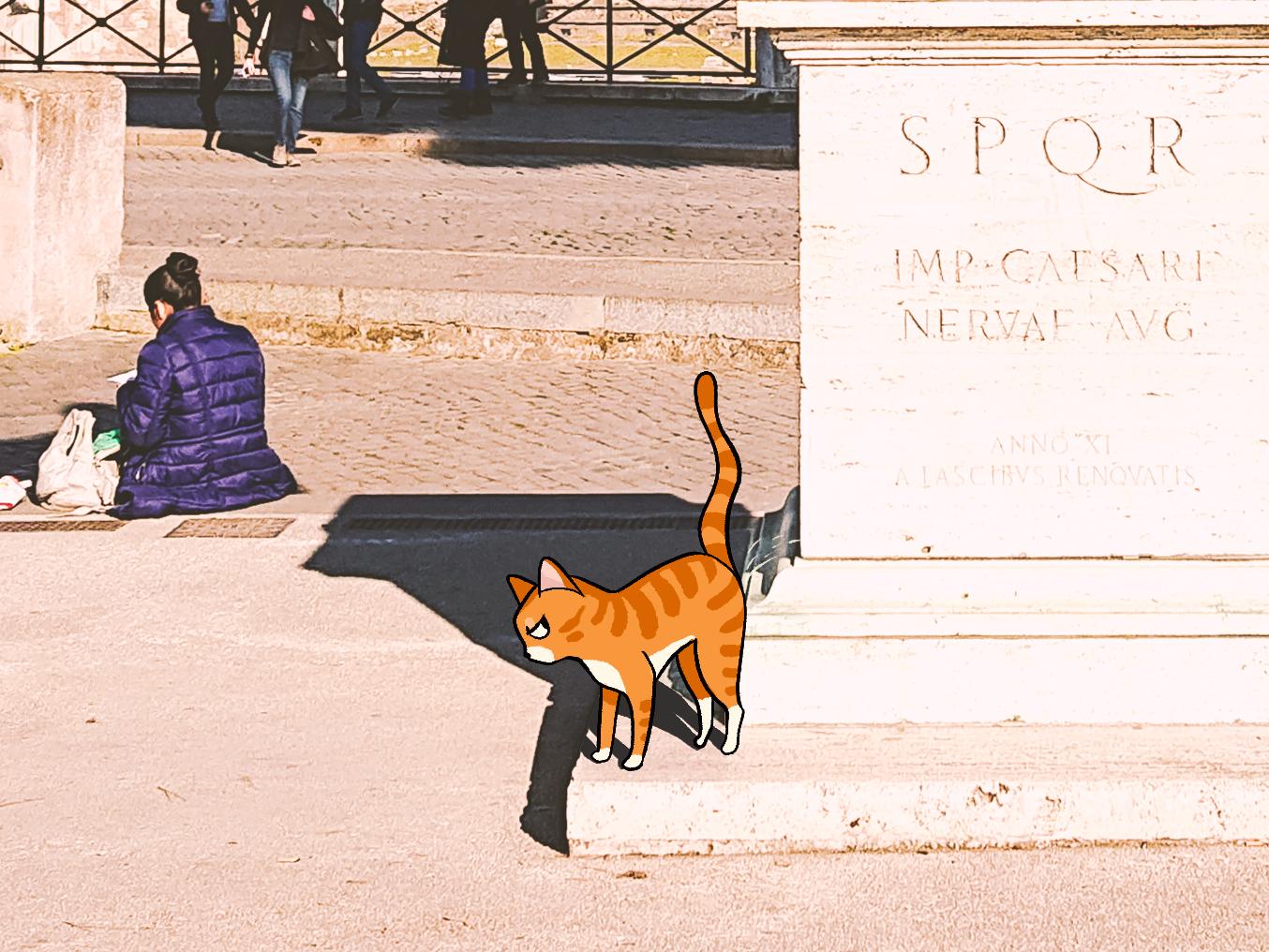 spqr-cat